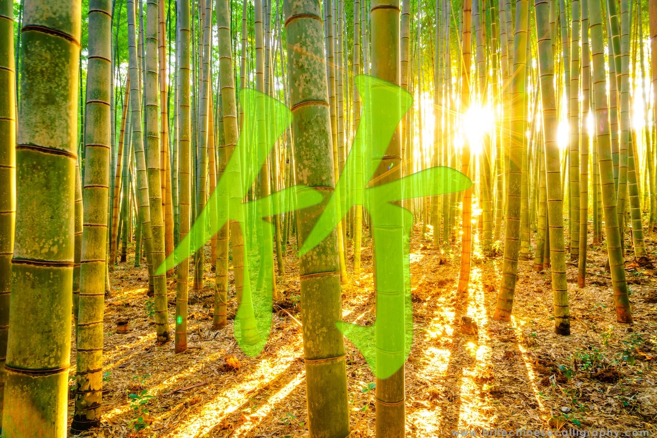5 Facts about Chinese Bamboo | BelleChineseCalligraphy.com