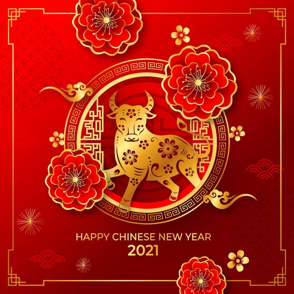 Belle Chinese Calligraphy Chinese New Year 2021
